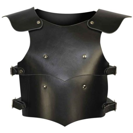 Childrens Squire Armour