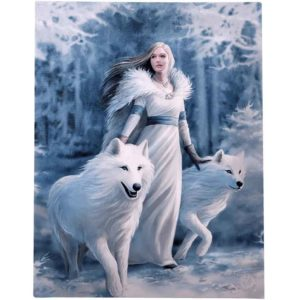 Winter Guardian Canvas Print by Anne Stokes